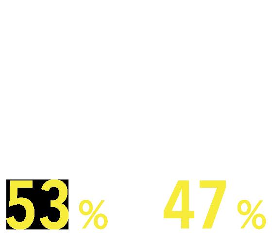 男性55%、女性45%